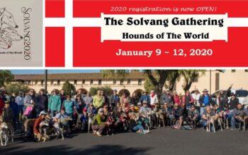 Solvang Gathering 2020